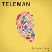 Brilliant Sanity - Teleman